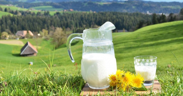 """《中国的奶业》白皮书显示:""""奶瓶子""""越来越让人放心"""